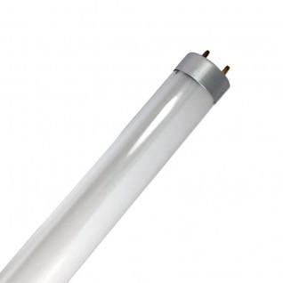 Tubo led 60cm 9W conexión dos lados